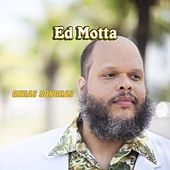 Ondas Sonoras by Ed Motta