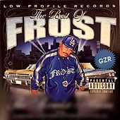 The Best of Frost by Various Artists