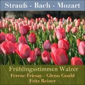 Frühlingsstimmen Walzer by Various Artists