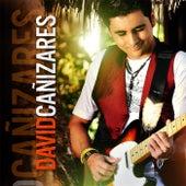 Soltero (feat. Ricky Lindo & Fuego) de David Cañizares
