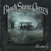 Soul Machine by Black Stone Cherry