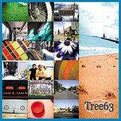 Tree63 by Tree63