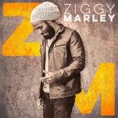 Ziggy Marley von Ziggy Marley