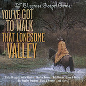 You've Got to Walk That Lonesome Valley - 27 Bluegrass Gospel Gems de Various Artists
