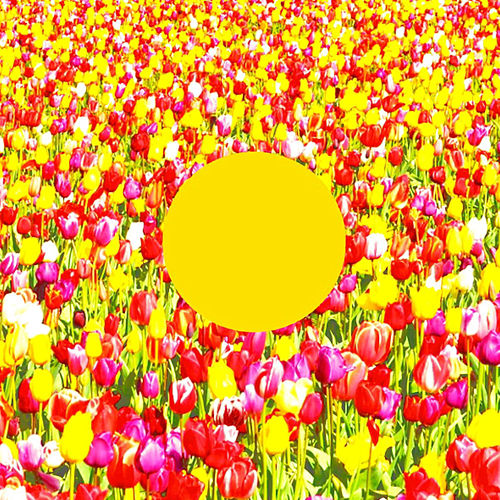 Spring Song (Jeremy Ebell Remix) by Arling & Cameron