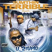 Sumthin Terrible Presents U Stupid by Various Artists