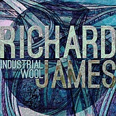 Industrial Wool de Richard James