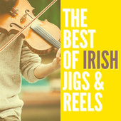 The Best of Irish Jigs & Reels by Various Artists