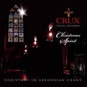 Christmas Spirit by CRUX