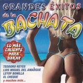 Grandes Éxitos de la Bachata de Various Artists