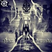 Never Surrender - Single by D.R.S.