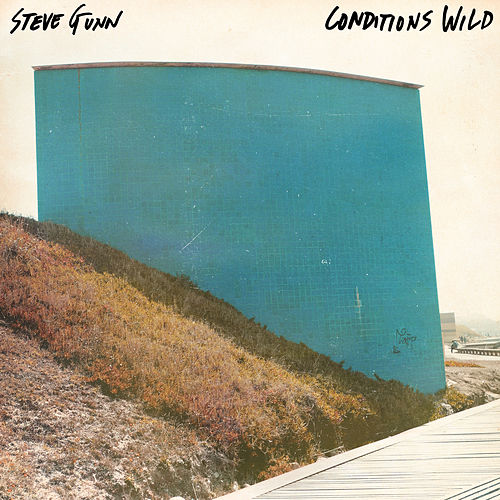 Conditions Wild by Steve Gunn
