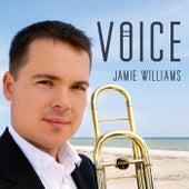 Voice by Jamie Williams
