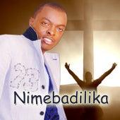 Nimebadilika by Ringtone