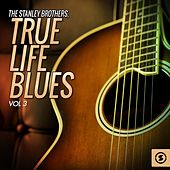 True Life Blues, Vol. 3 von The Stanley Brothers