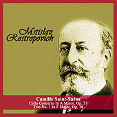 Camille Saint-Saëns: Cello Concerto In A Minor, Op. 33 - Trio No. 1 In F Major, Op. 18 by Various Artists