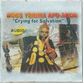 Crying For Salvation von Afo-Akom