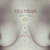 Nuevo Ciclo de Chambao