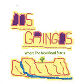 Where the New Road Starts by Dos Gringos