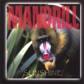 Sunshine by Mandrill