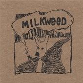 Milkweed by MiLkWeeD
