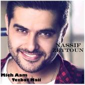 Mich Aam Tezbat Maii by Nassif Zeytoun