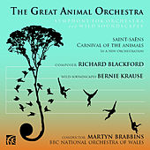 The Great Animal Orchestra, Symphony for Orchestra and Wild Soundscapes by BBC National Orchestra Of Wales