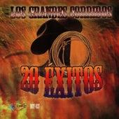 Los Grandes Corridos - 20 Exitos by Various Artists