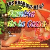 Los Grandes De La Cumbia De La Costa by Various Artists