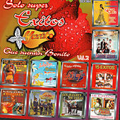 Solo Super Exitos Que Suenan Bonito, Vol. 2 de Various Artists