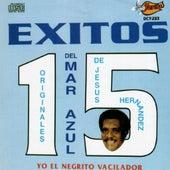 15 Exitos by Mar Azul