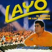 Las Mejores Chilenas von Layo & Bushwacka!