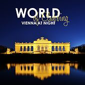 World of Clubbing: Vienna at Night by Various Artists