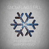 Snowflakes Fall de Eleanor McEvoy