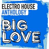 Big Love Electro House Anthology - EP von Various Artists