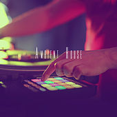 Ambient House by Various Artists