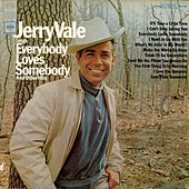 Sings Everybody Loves Somebody and Other Hits by Jerry Vale