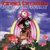 Sanctified Into Astroglide von Brad Brooks