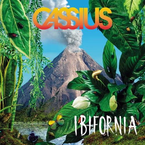Ibifornia de Cassius