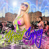Street Swag, Vol. 2 by Various Artists