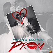Prom by Young Marco