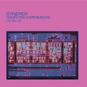 Computer Experiments, Vol. 1 de Synergy