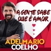 A Gente Sabe Que É Amor de Adelmario Coelho