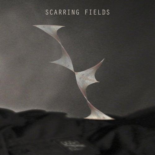 Scarring Fields by Scarring Fields