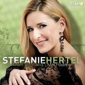 Mein Vogtland - Mei Haamet von Stefanie Hertel