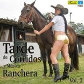 Tarde de Corridos y Música Ranchera, Vol. 2 by Various Artists