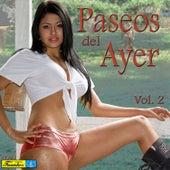 Paseos del Ayer, Vol. 2 by Various Artists