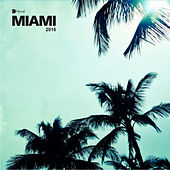 Miami 2016 Sampler by Various Artists