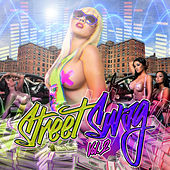 Street Swag, Vol. 2 de Various Artists