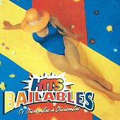 Hits Bailables de Diciembre a Diciembre de Various Artists
